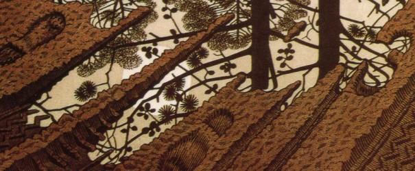 23.P2 Escher
