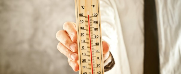 25.P1 Temperatura